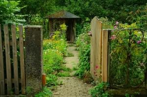garden-910946_640(1)